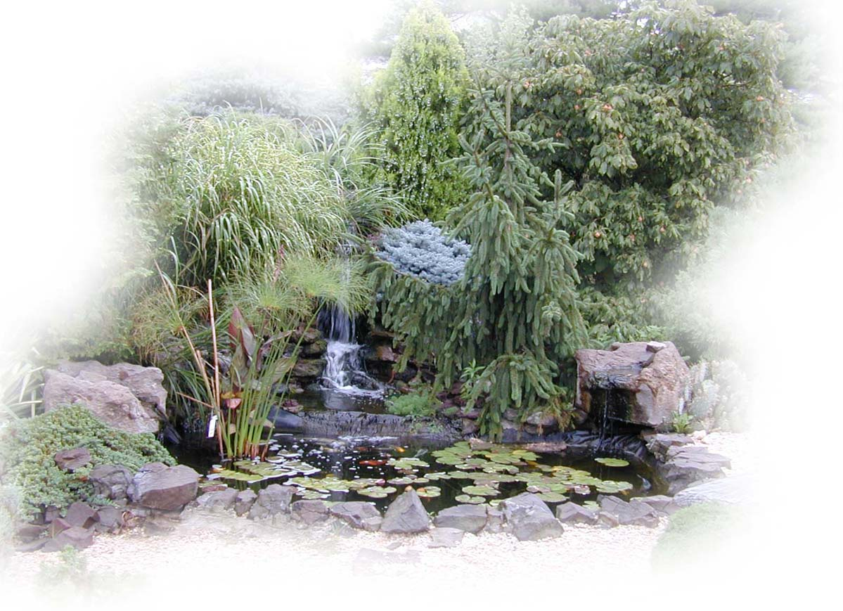 Pictures of ponds for Large pond waterfall